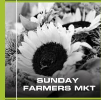 SUNDAY FARMERS MKT